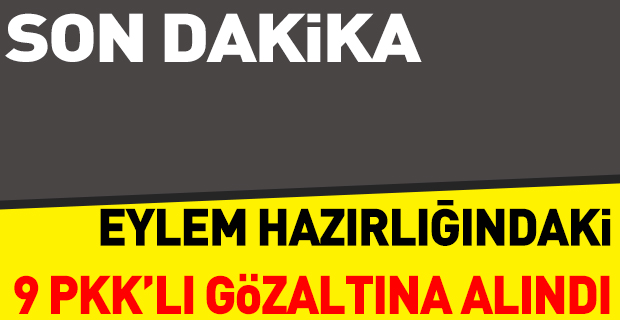 9 PKK'lı eylem hazırlığında yakalandı