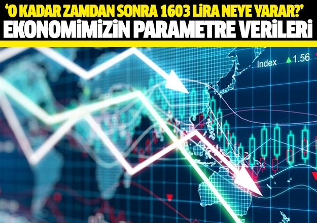 Ekonomimizin parametre verileri