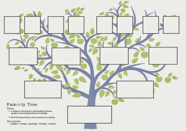 E Devlet üzerinde Soy Ağacı Sorgulama Nasıl Yapılır Aile