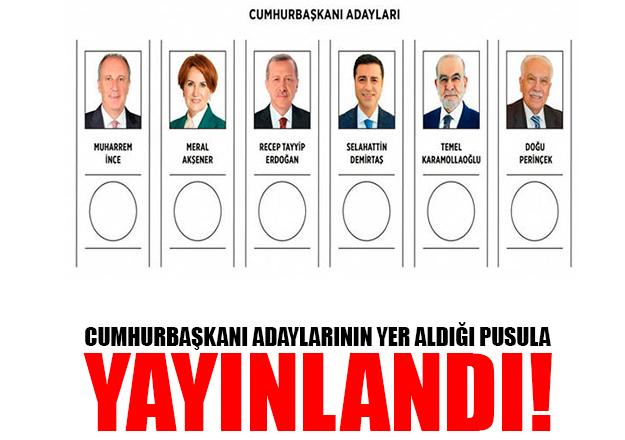 Cumhurbaşkanı adaylarının yer aldığı pusula yayınlandı! İşte sıralama