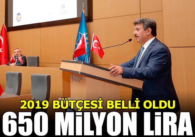 2019 yılı bütçesi 650 milyon TL