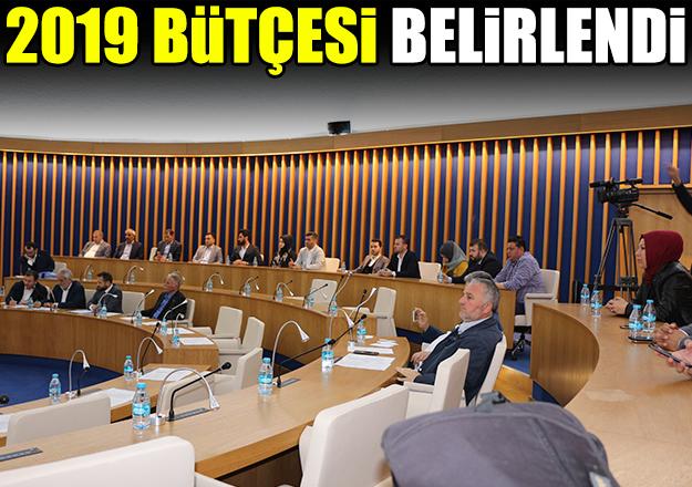 Bütçe oy birliği ile geçti