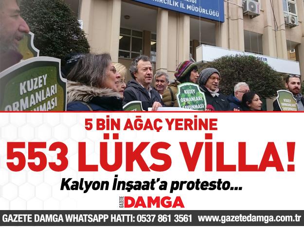5 bin ağaç yerine 553 lüks villa!