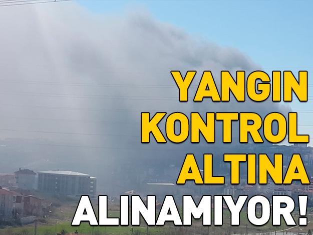 Arnavutköy Hadımköy'de fabrika yangını! Ölü ya da yaralı var mı