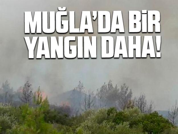 Bir yangın da Milas'ta!