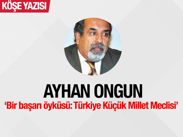 Bir başarı öyküsü: Türkiye Küçük Millet Meclisi