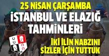 25 Nisan 2018 Çarşamba İstanbul ve Elazığ At Yarışı Tahminleri - Hazır Altılı Ganyan Kuponları