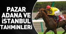 21 Ekim 2018 Pazar İstanbul ve Adana At Yarışı Tahminleri