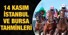 14 Kasım 2018 Çarşamba İstanbul ve Bursa At Yarışı Tahminleri ve Sonuçları