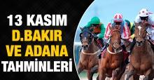 13 Kasım 2018 Salı Adana ve Diyarbakır At Yarışı Tahminleri