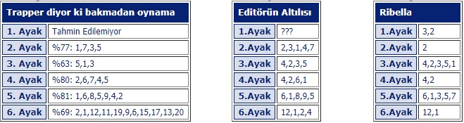 20 Haziran 2019 Perşembe Ankara At Yarışı Tahminleri