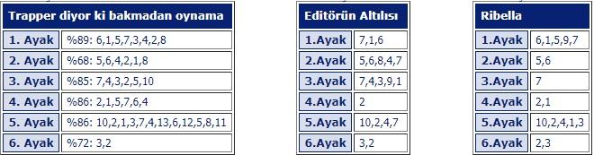17 şubat 2018 Bursa at yarışları