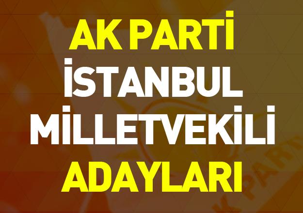 ak parti 24 haziran seçimleri istanbul milletvekili adayları
