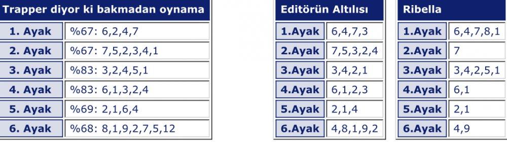 19 Ocak 2019 Cumartesi Adana at yarışı tahminleri