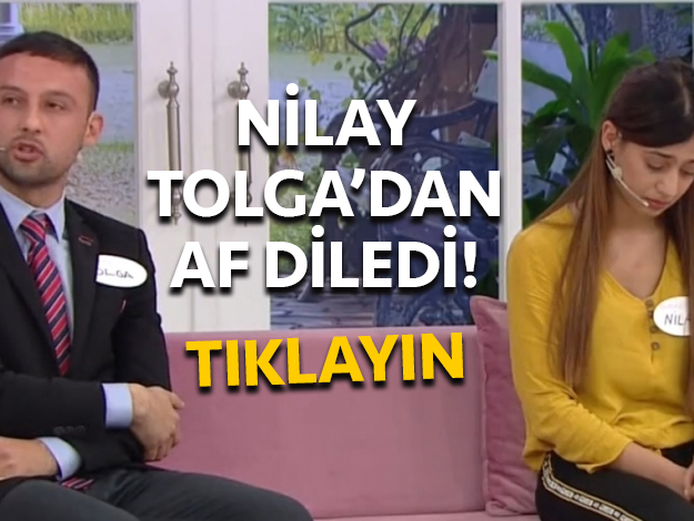 nilay tolga