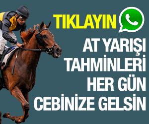 at yarışı whatsapp hattı